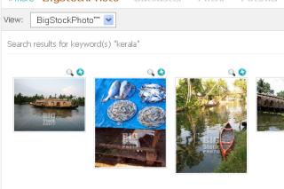 Search images in different image hosting services