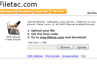 Filetac four services in one website i.e. wap upload, files upload, image upload and zip files