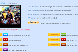 Videoripper download videos from video sites
