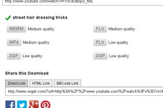 Download video from video streaming sites